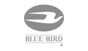 FooterLogoBlueBird